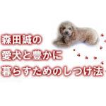 森田誠の「愛犬と豊かに暮らすためのしつけ法」評価 レビュー