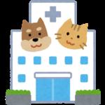 愛犬にやってはいけない治療と飲ませてはいけない薬Ⅰ